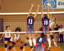 volleyball forever summer winter fall and spring cobra