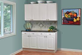Thermofoil Kitchen Cabinet Doors Kitchen Room Great Stylish Kitchen Cabinets Doors Glass Bee Home