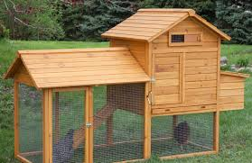 chicken coop in small backyard chicken coop design ideas