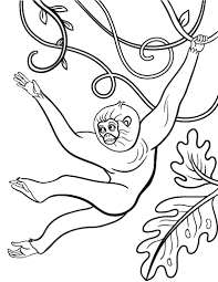 printable monkey coloring pages new coloring pages animals and more