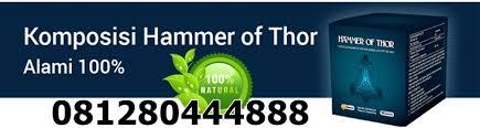 4 kandungan hammer of thor pembesar alat vital herbal yang aman