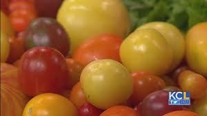kcl lidia u0027s unveils a new summer panzanella salad youtube