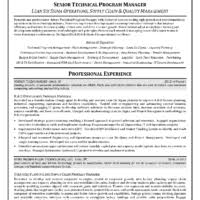 It Director Resume Examples by Senior Level It Manager Resume Sample With Experience And