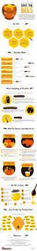 Raising Bees In Backyard by Best 25 Bees Ideas On Pinterest Bee Friendly Flowers Bee