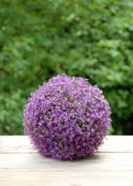 Topiary Balls With Flowers - decorative balls moss balls