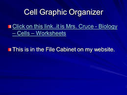 the structure and function of cells introduction ppt download