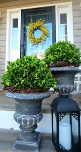 Front Door Planters by 44 Best Shrubs For Containers Plastic Pots Flowers And Urn