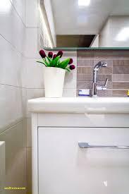 bathroom design nyc bathroom unique small design nyc wodfreview