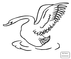 coloring pages for kids lady swan birds swans coloring7 com