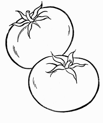 valuable inspiration tomato coloring pages frog slice soup for