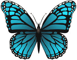 large blue butterfly png clip art image gallery yopriceville