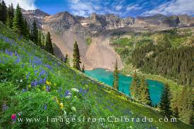 colorado lakes images Lower blue lakes wildflowers 2 blue lakes images from colorado jpg