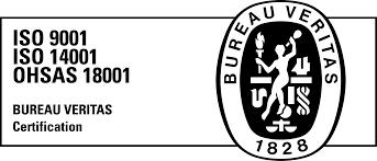 bureau veritas logo b w spig