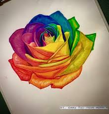 rainbow rose artwork personally hand drawn colorrealism color