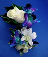 Blue Orchid Corsage Blue Bom Dendrobium Orchid Corsage Google Search Homecoming