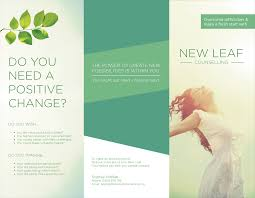 brochure design for nicholas levy by nalee design 3446605