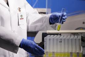 bureau veritas testing bureau veritas minerals industry leading solutions for the