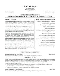 free executive resume here are excel resume template resume template excel senior level
