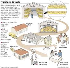 from farm to table usda salmonella oregonlive com