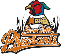the birdist grading bird themed minor league baseball teams