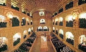 diy basement wine cellar home design ideas