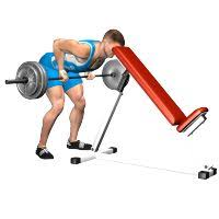 Bench Barbell Row 3123 Best Exercicios Images On Pinterest Workout Routines