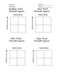 worksheets punnett square worksheet opossumsoft worksheets and  with worksheets punnett square worksheet to be disney and activities on  pinterest celebrity punnett squares handout pdf from opossumsoftcom