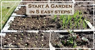 How To Start A Garden Bed Exclusive Idea Start A Garden Impressive Decoration Start New