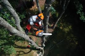 commercial outdoor power equipment for professionals husqvarna