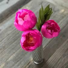 The Pink Peonies by Three Pink Peonies Bundle U2014 Paper Rose