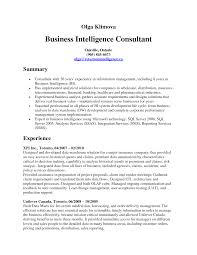 Business Consultant Resume Example by Business Consultant Sample Resume Resume For Your Job Application