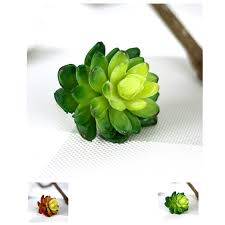 online buy wholesale artificial cactus plants from china
