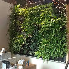 Interior Plant Wall Agrosci Interior Green Walls