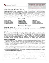 supply chain manager resume sample u2013 topshoppingnetwork com