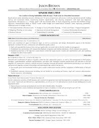 Resume Sample Program Manager by Sample Project Manager Resume Free Free Resume Templates Sample