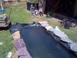 Backyard Fish Farming Tilapia Back Yard Fish Farm Ponds