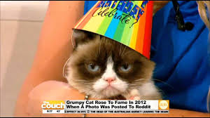 Grumpy Cat Meme Happy - happy birthday grumpy cat youtube