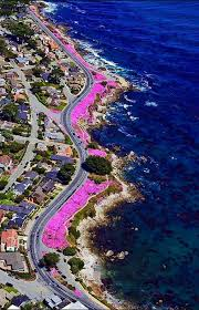 Monterey Ca Bed And Breakfast Best 25 Pacific Grove California Ideas On Pinterest Hotels