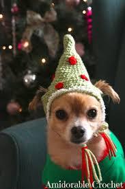 86 best crochet for pets images on pinterest crochet pet free