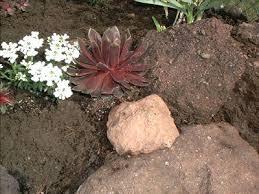 build a rock garden s build rock garden edge u2013 sdgtracker