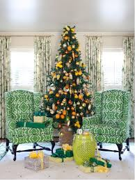 green ficus tree houzz