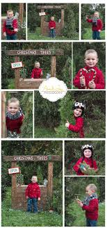 creative shoots for tree sale