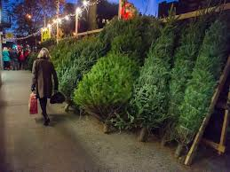 Natural Christmas Tree For Sale - christmas tree shortage may drive up the price of your tree this