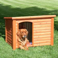Ideas & Tips Amazing Wood Cool Dog Houses With Slate Roof For