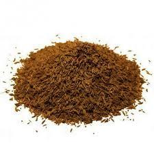carvi cuisine carvi en graine achat utilisation bienfaits