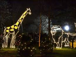 turtle back zoo lights free holiday lights at turtle back zoo return for 2017 west orange