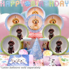 puppy party supplies how to throw a dog party ideas and food party gifts