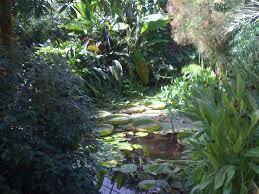 Botanic Gardens Dundee Pgg Dundee Botanic Gardens Aug13 02 Pgg