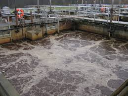 wastewater treatment paul b doran p e