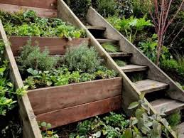 terraced garden design fascinating small terraced garden ideas